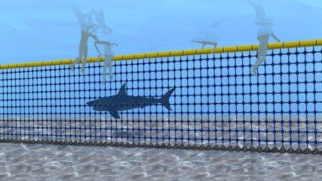 664579-shark-net