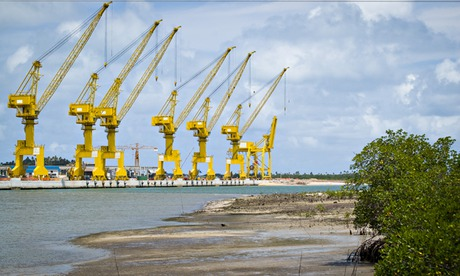 MDG : Suape port and shellfish fishing : Mangrove and cranes, Pernambuco, Brazil